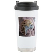 Trilobite eye fossil, S Travel Mug