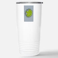 Pediastrum green algae, Stainless Steel Travel Mug