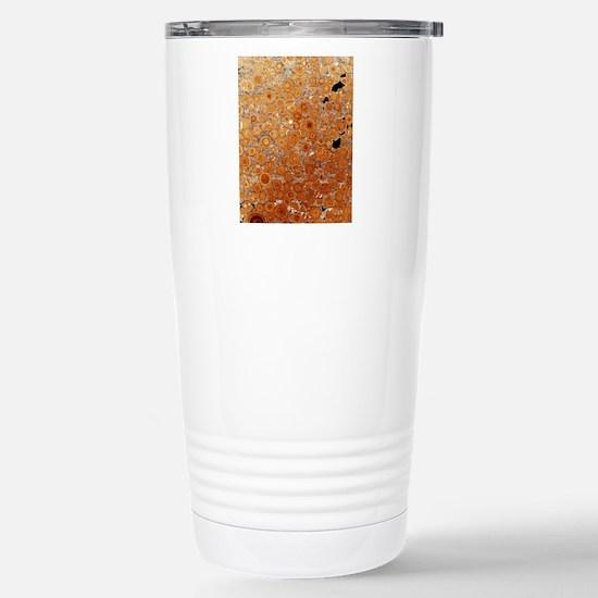 Oolitic limestone rock Stainless Steel Travel Mug