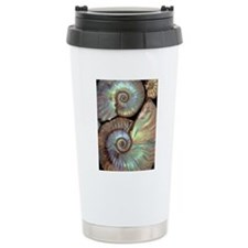 Fossilised ammonites Travel Mug