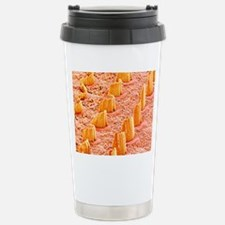 Inner ear hair cells, S Travel Mug