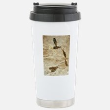 Fish fossils Travel Mug
