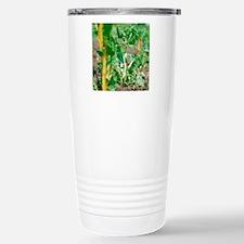 Chard plant Travel Mug