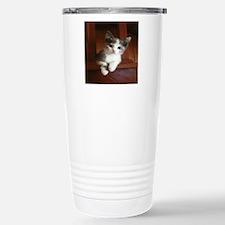 Adorable Calico Kitten. Travel Mug