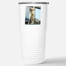 Singapura Cat True Beau Travel Mug