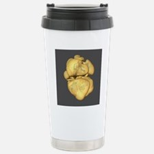 Supernova explosion Travel Mug