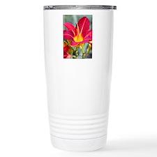 Notecard - Chakra Cards Travel Coffee Mug