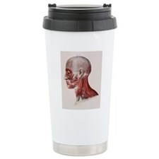Facial nerves Travel Mug