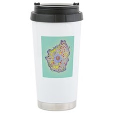 Naegleria fowleri proto Travel Mug