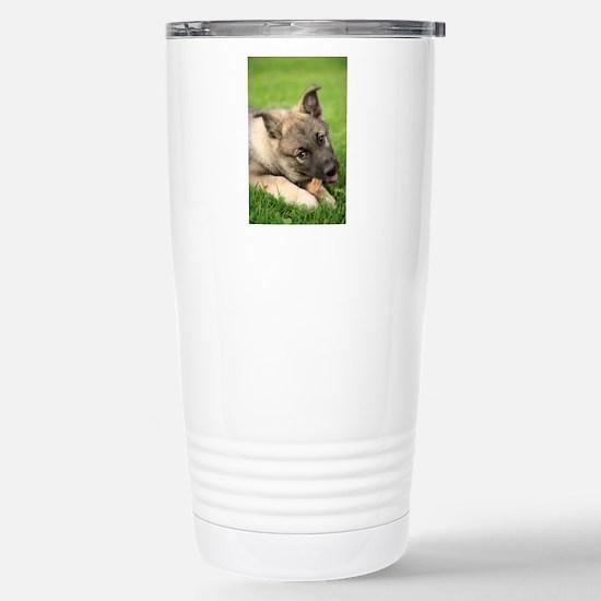 Norwegian elkhound pupp Stainless Steel Travel Mug