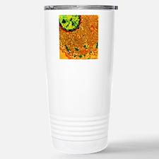 Coloured TEM of endopla Travel Mug