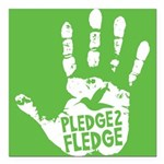 "Pledge to Fledge Square Car Magnet 3"" x 3"""