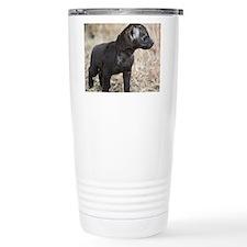 African Hyena cub Travel Mug