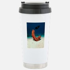 Sea cucumber Stainless Steel Travel Mug