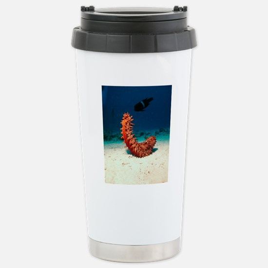 Sea cucumber Stainless Steel Travel Mug