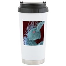 Springtail's head, SEM Travel Coffee Mug