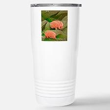 Water bears, SEM Stainless Steel Travel Mug