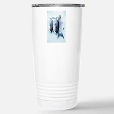 Grey mullet Stainless Steel Travel Mug