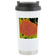 Human papilloma virus p Travel Mug