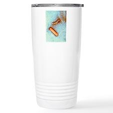 Influenzavirus B, TEM Thermos Mug