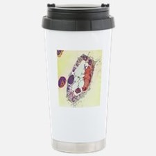 Leishmania protozoa, TE Stainless Steel Travel Mug