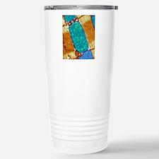 Mitochondrion, TEM Stainless Steel Travel Mug