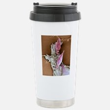 Protozoan infecting mac Stainless Steel Travel Mug