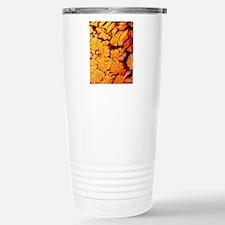 Scanning electron micro Travel Mug