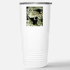 Apollo 11 image of crat Travel Mug