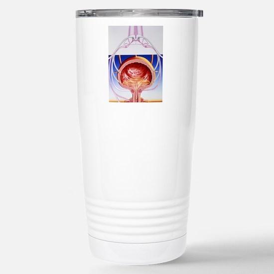 Artwork of a bladder an Stainless Steel Travel Mug