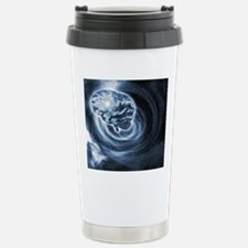 Brain in space Stainless Steel Travel Mug