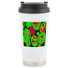Coloured TEM of neutrop Travel Mug
