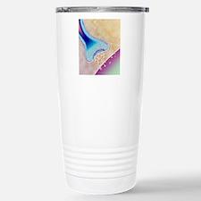 Computer artwork of a n Stainless Steel Travel Mug