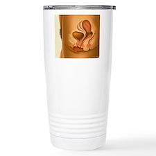Female sexual arousal Thermos Mug