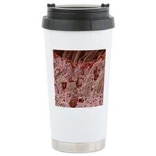 Hair follicles, SEM Travel Coffee Mug