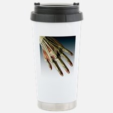 Hand anatomy Stainless Steel Travel Mug