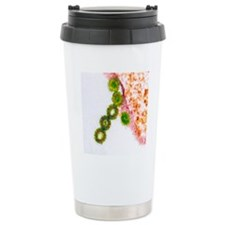 H1N1 swine flu virus, T Travel Coffee Mug