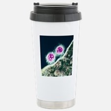 H1N1 swine flu virus, T Stainless Steel Travel Mug