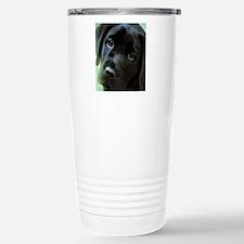 black lab Stainless Steel Travel Mug