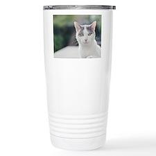 Grey and white cat look Travel Mug