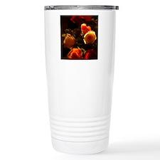Roses I - Orange, Red a Thermos Mug