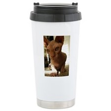 Naked Cat Up-Close Travel Mug