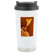 Neutrophil cell and bac Travel Mug