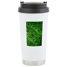 Borrelia bacteria, SEM Travel Mug