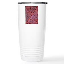 Leaf anatomy, light mic Travel Mug