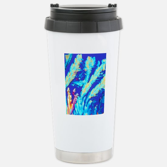 PLM of crystals of magn Stainless Steel Travel Mug