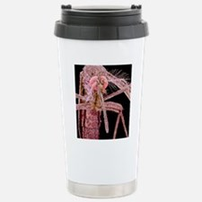 Asian tiger mosquito, S Stainless Steel Travel Mug