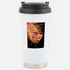 Foot of jumping spider, Stainless Steel Travel Mug