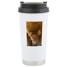 Fruit fly proboscis, SE Travel Mug