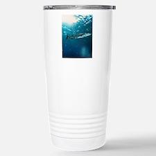 Great barracuda Travel Mug